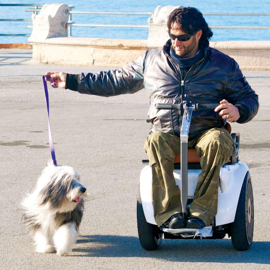 Pasea a tu mascota sin problemas con la silla de ruedas eléctrica Genny